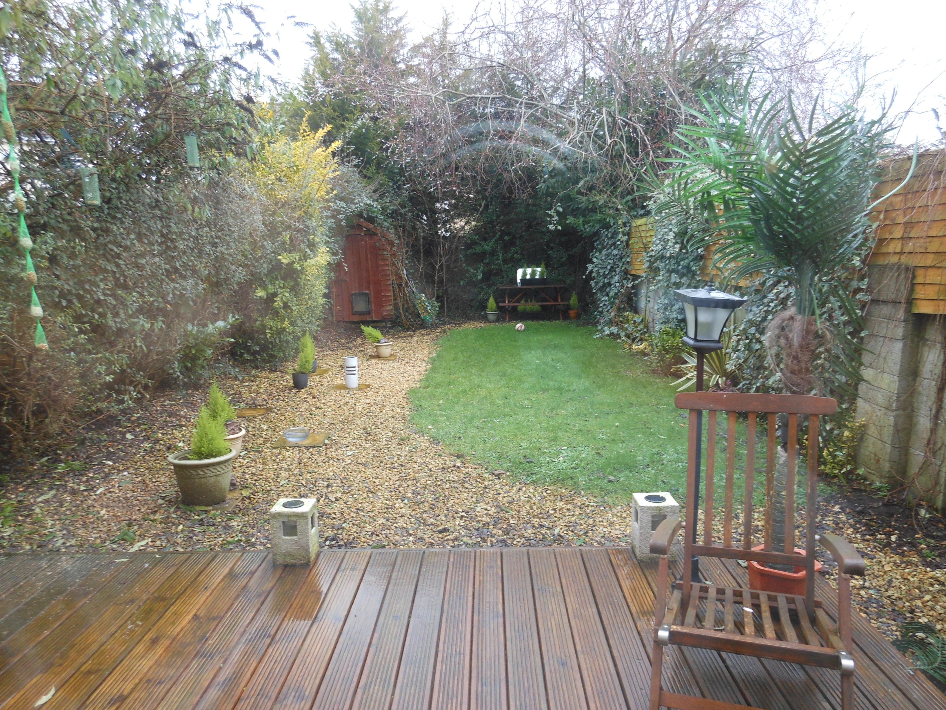 meu quintal meu jardim : meu quintal meu jardim:dublin